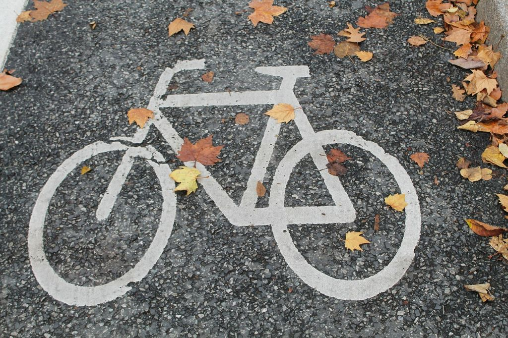 infrastruktura rowerowa jesień